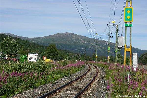 En klassisk svensk järnvägsvy i sommarskrud. Utfarten från Duved mot Åre med Åreskutan i fonden för åtta år sedan idag.